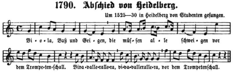 Viola Baß und Geigen
