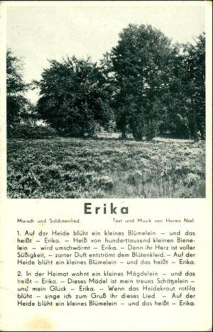 Erika-2